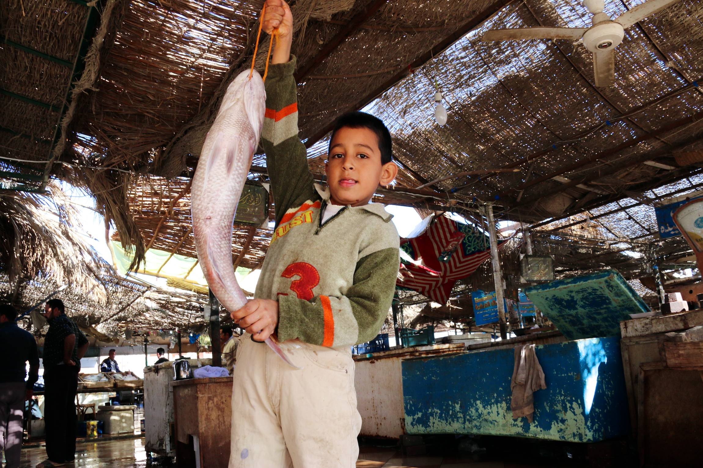 A child holds a fish in El Quseir, Egypt, Jan. 3, 2014.